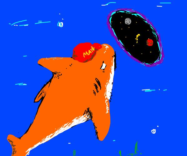 orange shark takes a portal into space