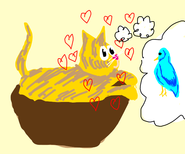 Cat in a bowl loves a bird