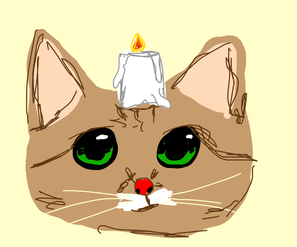 cat with candle on head