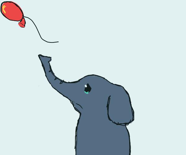 baby elephant's balloon floats away
