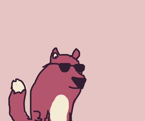 fox w/ glasses