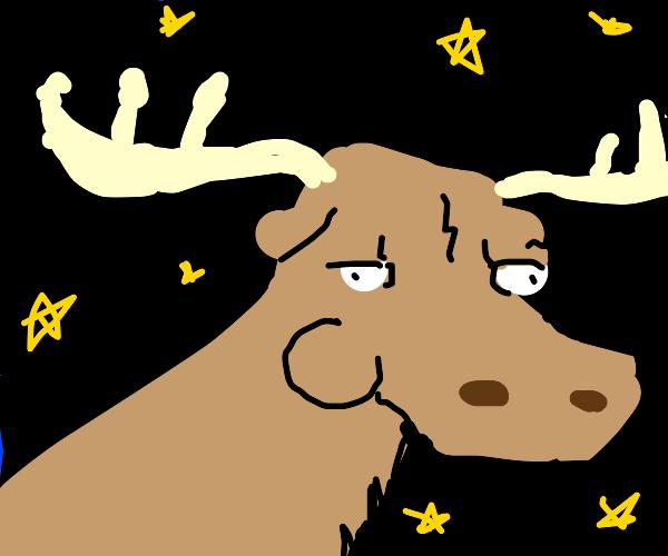 moose in space