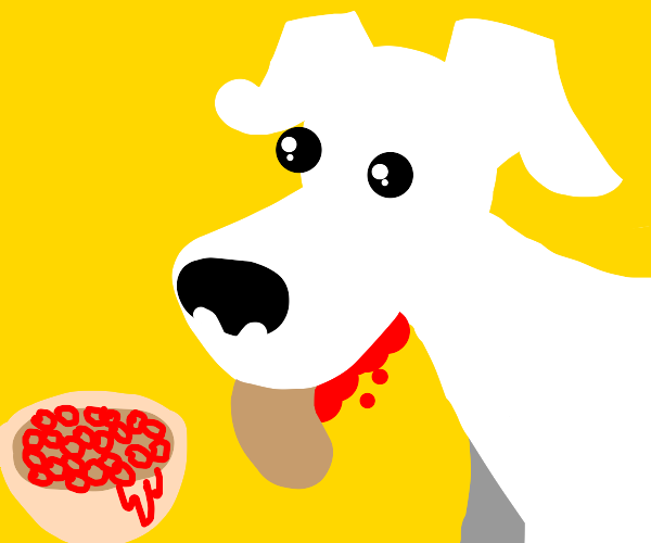 White dog eating spaghettios