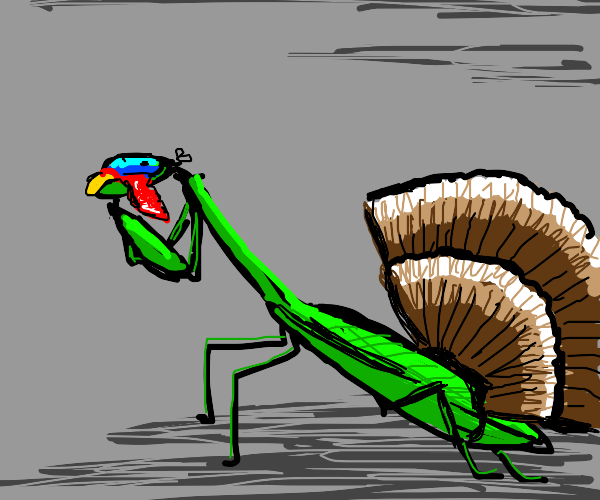 Praying Mantis pretending to a Turkey