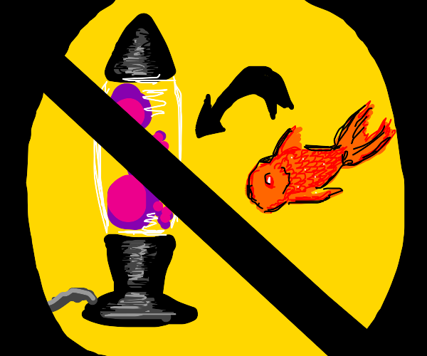 DO NOT put your fish into a lava lamp