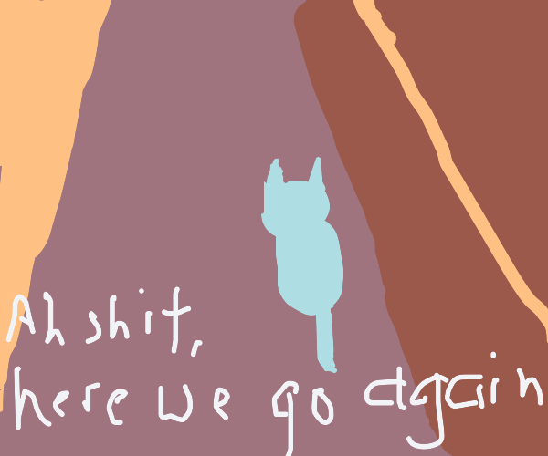 Ah s###, here we go again! (but with cats)