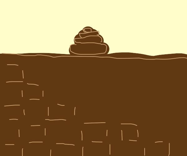 Brown bricks with mine crap
