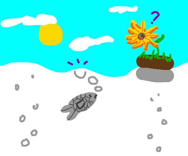 Goldfish sees Sunflower above the water
