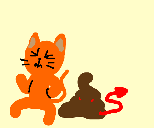 orange cat takes satanic poop
