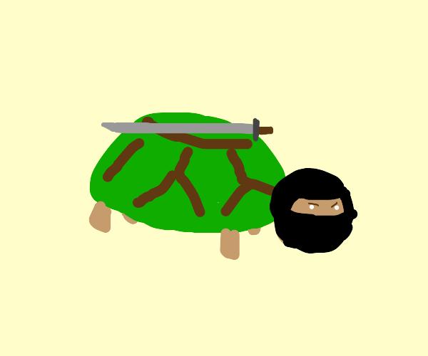Ninja turtle.