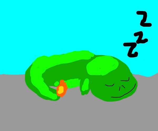 green charmander sleeping