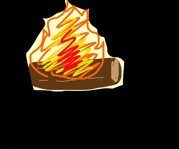 log on fire