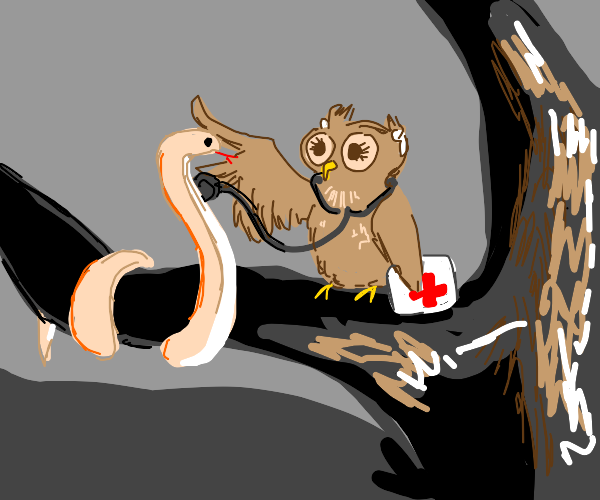 Owl doctor vibing in a tree