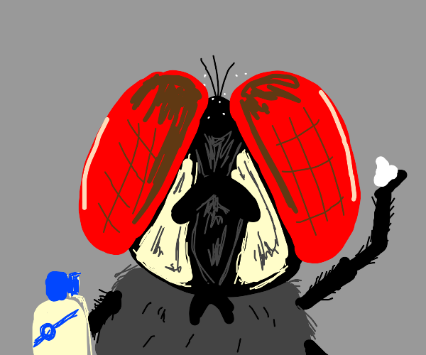 a bug with some dandruff