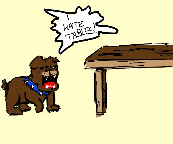 a dog barking on a table
