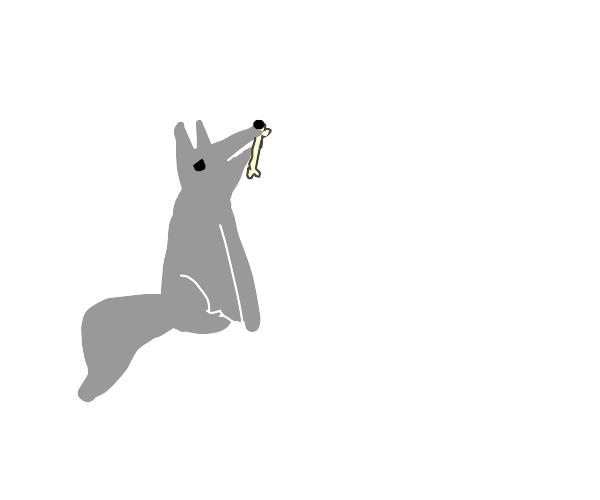 A wolf with a bone