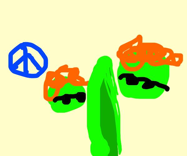 Hippie Peas