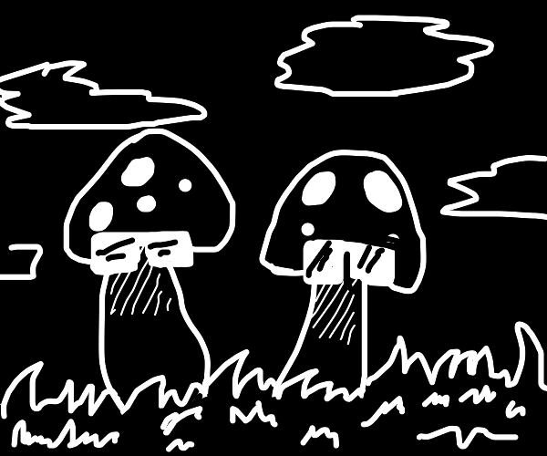 two mysterous mushrooms