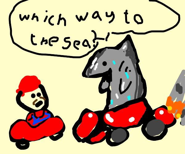 Shark lost in mario cart