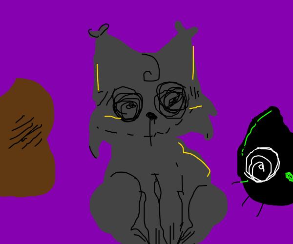 spooky cats (Black, brown, grey)