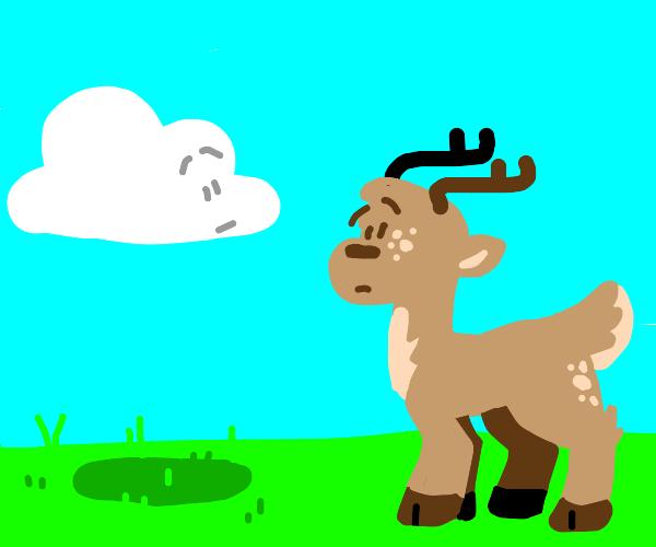 Cloud and rendeer