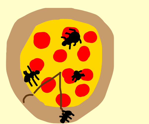 ants on a pizza