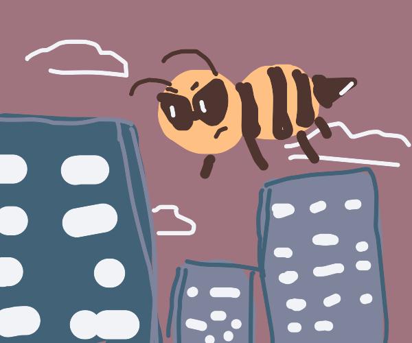 Giant bee terrorizes city