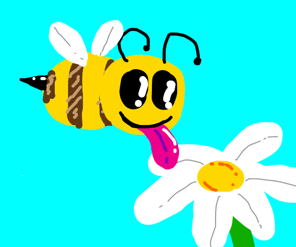 Bee going to lick flowers