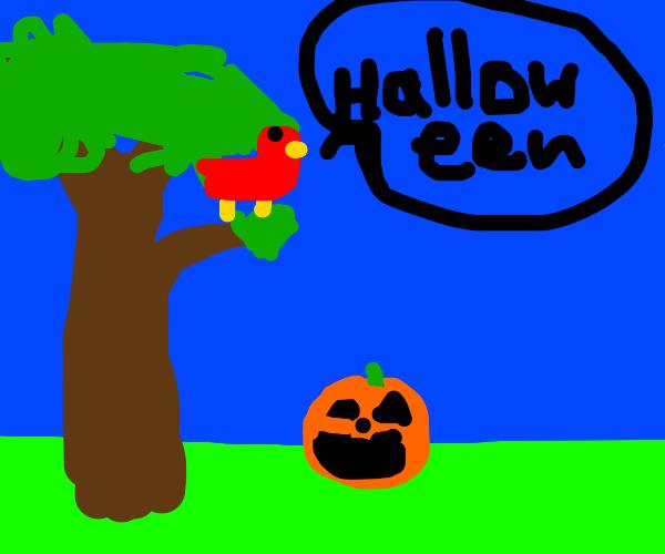 bird says halloween