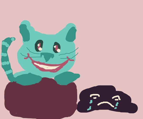 Blue cat laughs at a sad rock