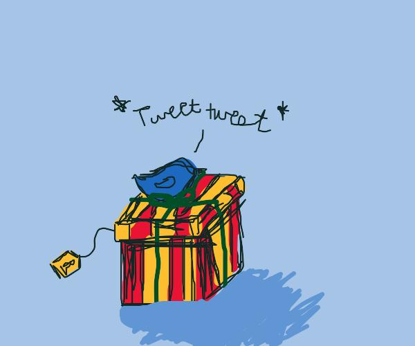 Bird sitting on a present
