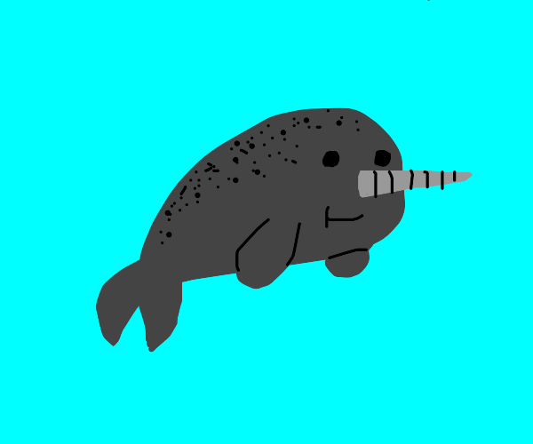 Narwhal!!