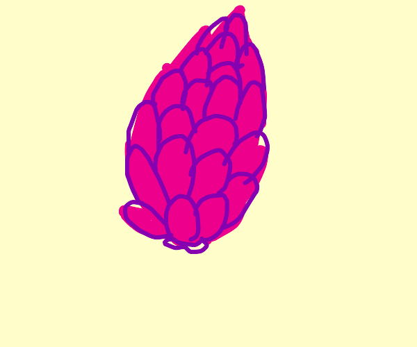 Pink pine cone