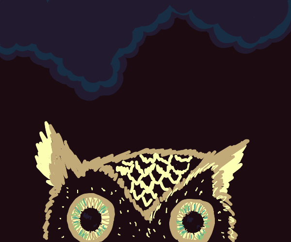 Owl is Watching