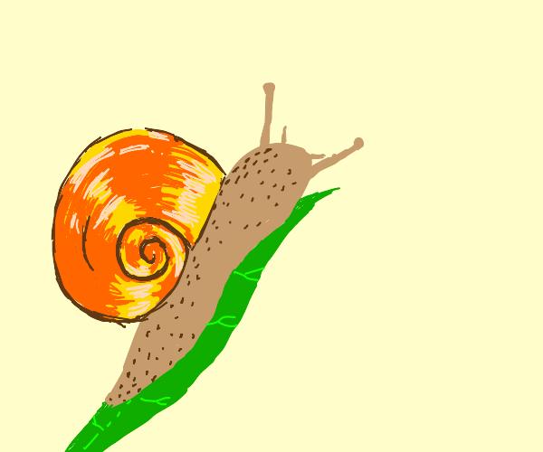 snail is vibin doe