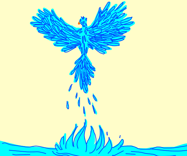 flying water bird