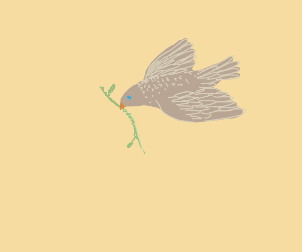 A dove with an olive branch