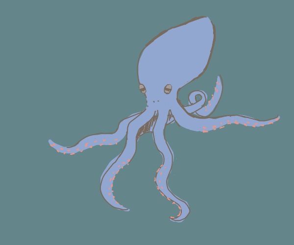 A lovely squid is out there BIG chillin'