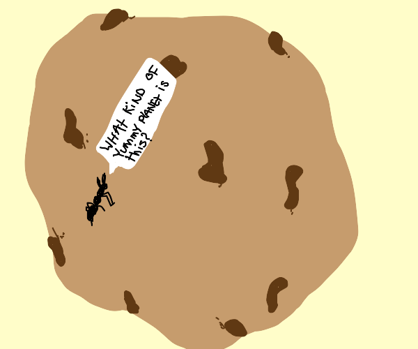 small ant on a big cookie confused about it