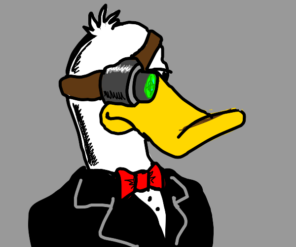 Secret duck