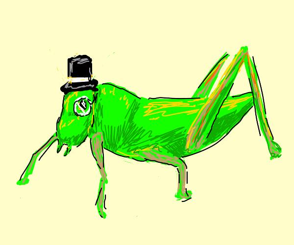 sophisticated grasshopper