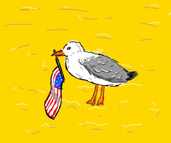 Segal holding American flag on beach