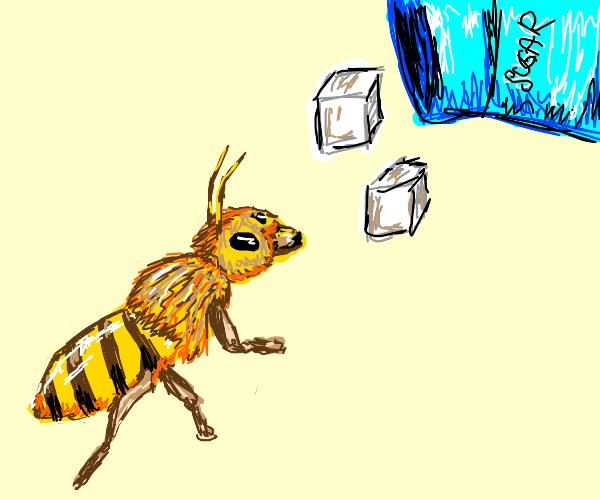 Bee screams as sugar falls on it from jug
