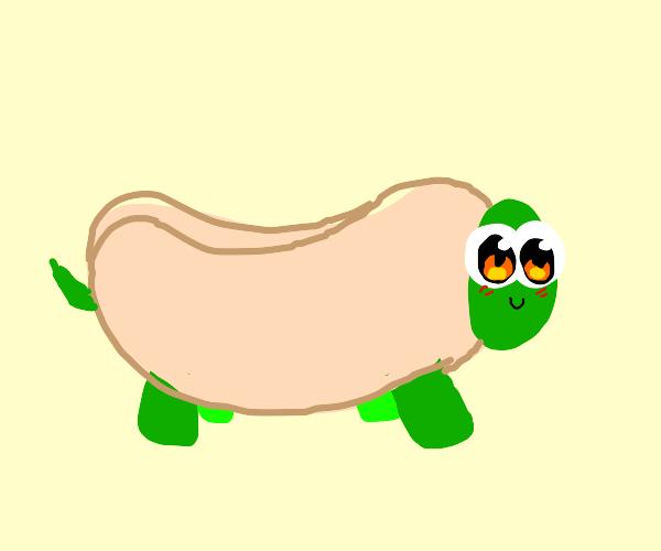 Turtle in a hot dog bun