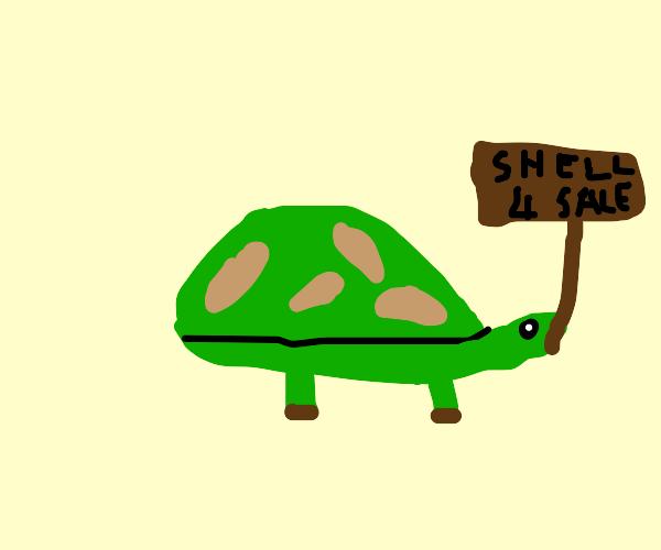 Tortoise Salesman