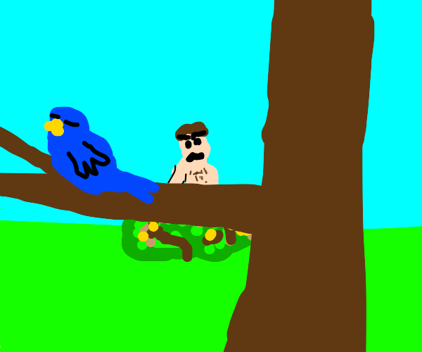 Naked Man Sneaks Towards Bird