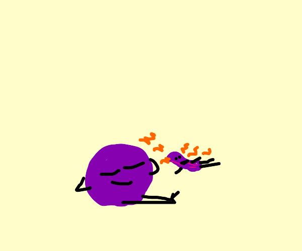 2 plums suntanning - one turned into raisin