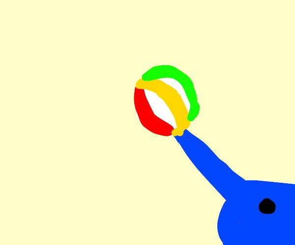 swordfish plays with beach ball