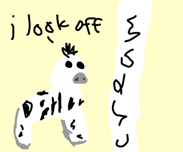 Zebra looks off to the cream walls