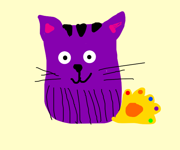 thanos cat puts it's face at you